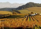 1_des-africa-south-africa-vineyard01_2580x1451