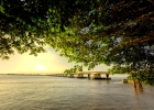 12_Daule-River-near-Guayaquil.jpg