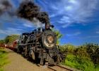 21_Tren-Crucero-steam-locomotive-crossing-sugar-cane-crops.jpg