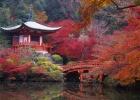 2_Kyoto_FS.jpg